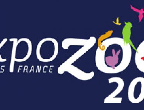 Messebericht Expozoo Paris 2019
